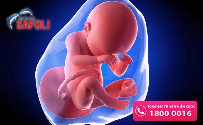 Axit folic là vitamin B9 ngăn ngừa dị tật cho thai nhi