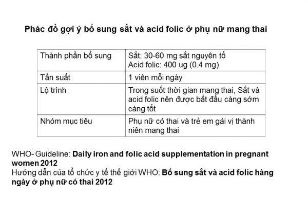 Nhu cầu bổ sung sắt và acid folic theo khuyến cáo của WHO